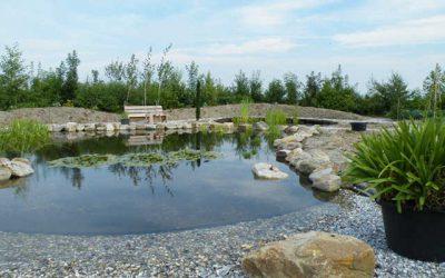 Vossebeld vijvers vijveraanleg en vijvershop for Natuurlijke vijver maken