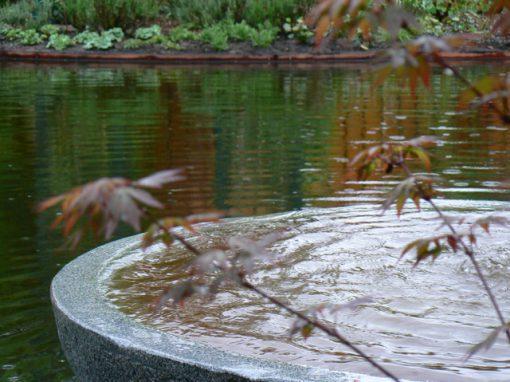 Natuurlijke vijver Vriescheloo (Groningen)