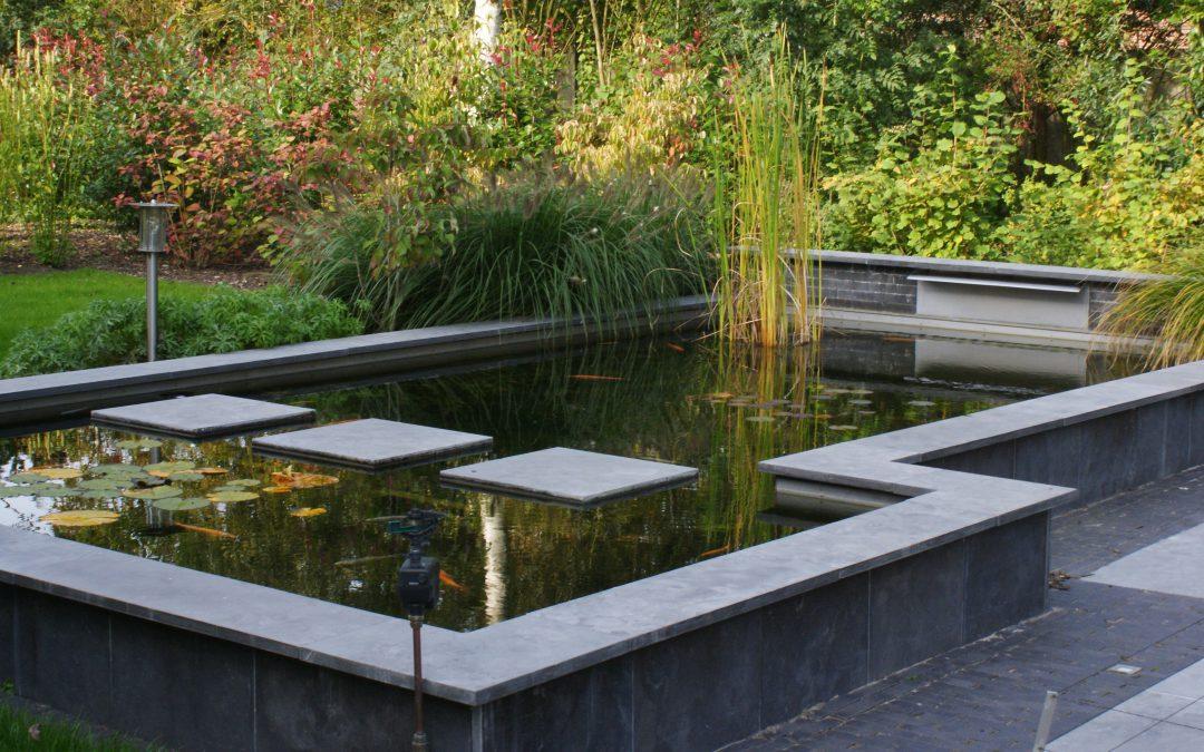 Strakke vijver Beilen (Drenthe)