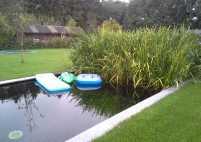 zwemvijver Odoorn Vossebeld Vijvers (1)