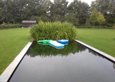 zwemvijver Odoorn Vossebeld Vijvers (3)