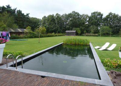 zwemvijver Odoorn Vossebeld Vijvers (4)