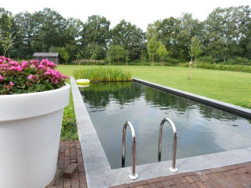 Zwemvijver Odoorn (Drenthe)