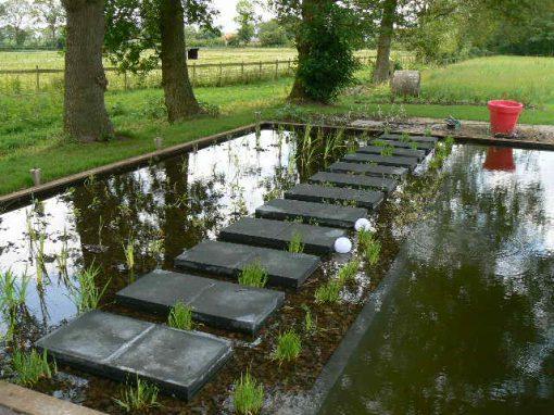 Zwemvijver Appelscha Friesland
