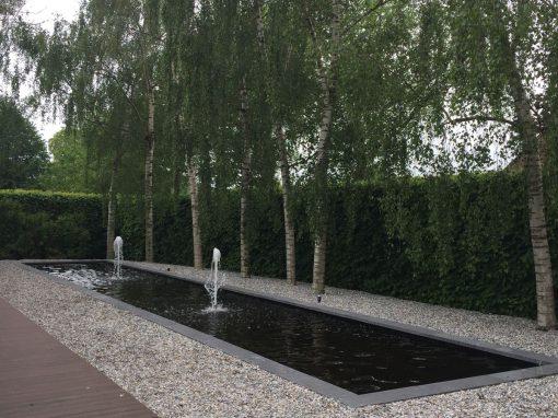 Spiegelvijver Wirdum ( Friesland)