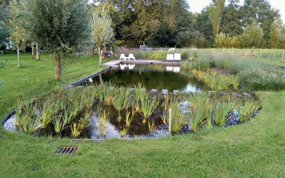 Zwemvijver Leeuwarden, Friesland